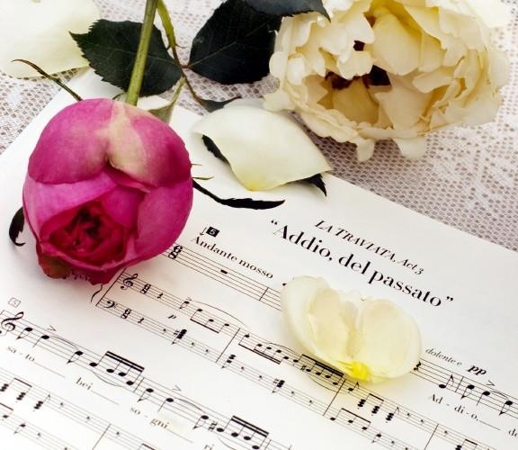 Schlager Musical Operette